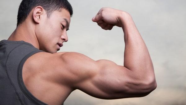 differents programmes au poids de corps